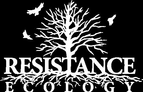 resistecolSHIRTvector